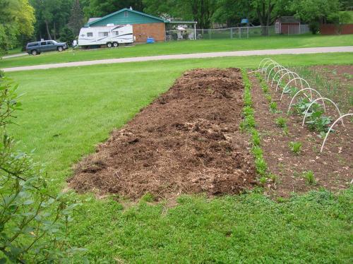 Photo Of No Till Garden Prep And Etc